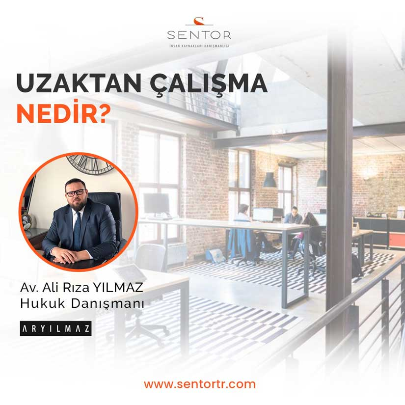 WHAT İS REMOTE WORK?